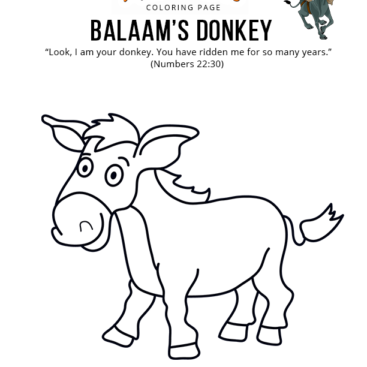 Donkeys Coloring Pages and Printable Activities | 367x367